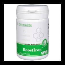 BoostIron™ Santegra N60 maisto papildas